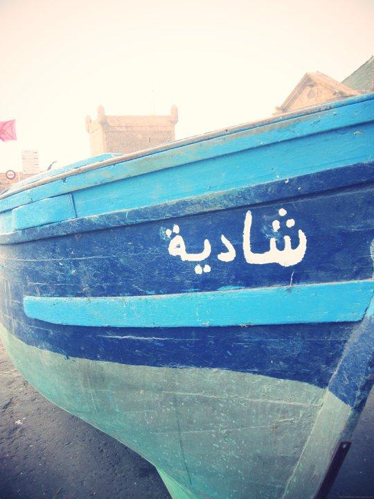 marokkaanse_vis_mooncake